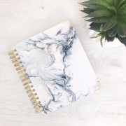 Lifestyle Planner - Blue Marble