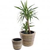 Toba Set Of Two Rattan Drypots.