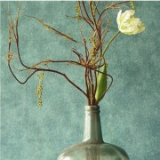 Designer Wallpaper - Brian Yates -  Dark Green